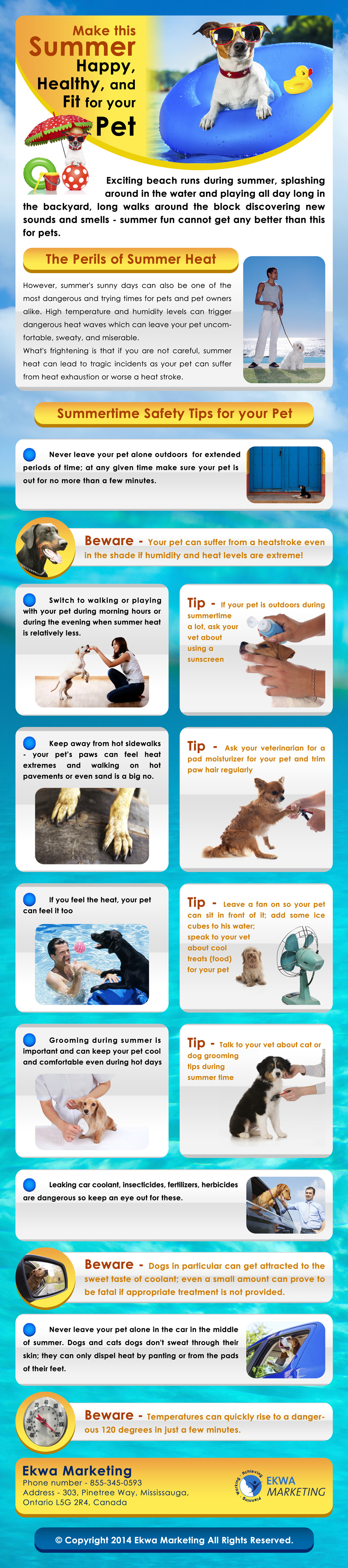 Veterinary Info Graphics, Make this Summer Happy, Healthy and fit for your pet