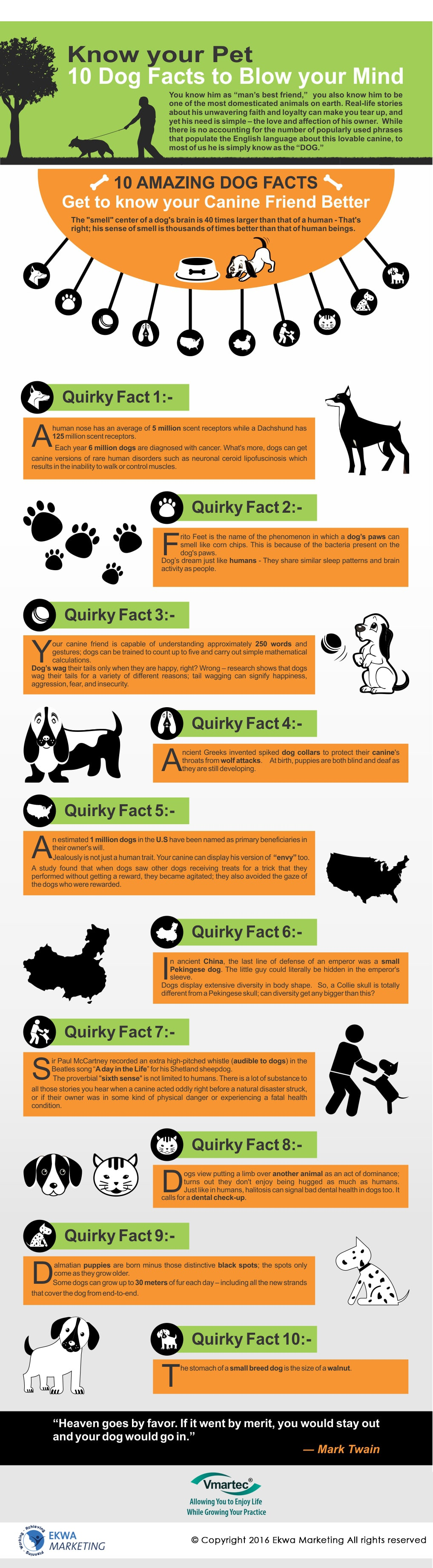 Vmartec, 10 Dog Facts to Blow your Mind