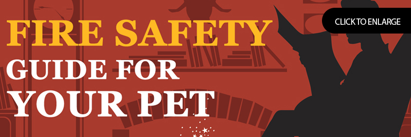 Fire Safety Guide For Your Pet