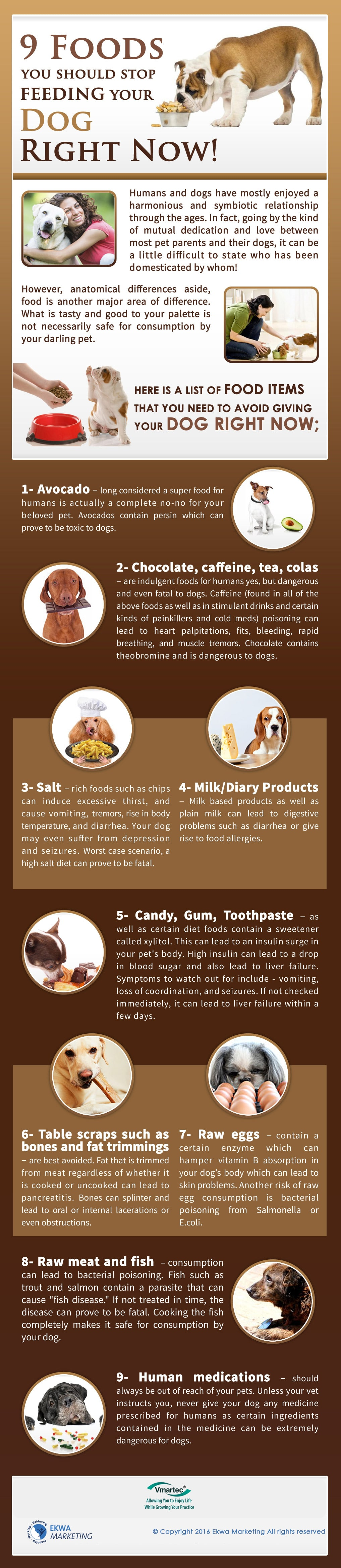 Vmartec, 9 foods you should stop feeding your dog now